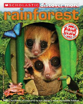 Rainforest by Penny Arlon