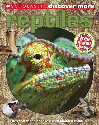 Reptiles by Penny Arlon