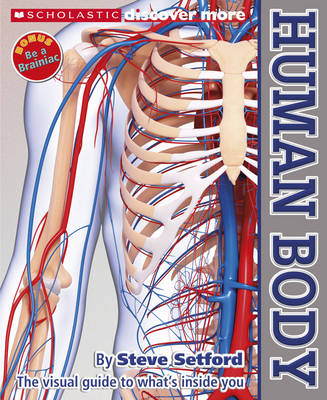 Human Body by Steven Setford
