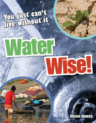 Water Wise! Age 9-10, Average Readers by Alison Hawes