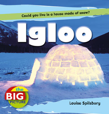 Igloo by Louise Spilsbury