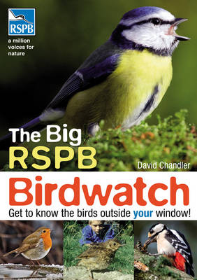 The Big RSPB Birdwatch by David Chandler