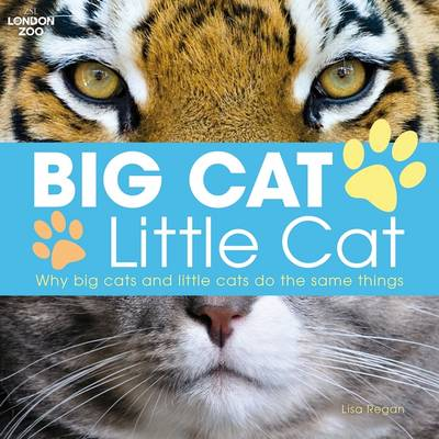 Big Cat, Little Cat by Lisa Regan