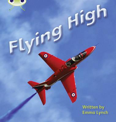 Phonics Bug Non-fiction Set 16 Flying High by Emma Lynch