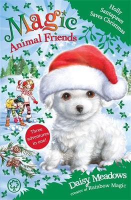 Holly Santapaws Saves Christmas by Daisy Meadows
