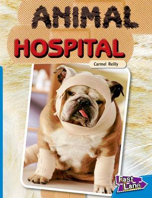 Animal Hospital Fast Lane Blue Non-Fiction by Carmel Reilly