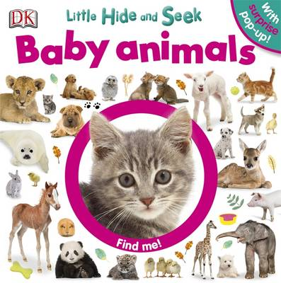 Little Hide and Seek Baby Animals by