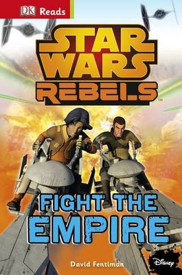 Star Wars Rebels Fight the Empire! by DK