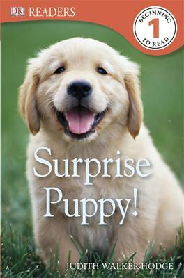 Surprise Puppy! by Judith Hodge