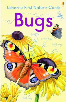 Nature Cards: Bugs by Emily Bone