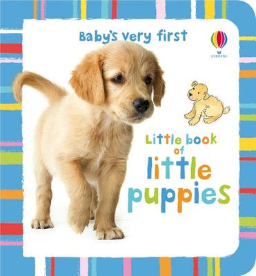 Little Book of Little Puppies by Antonia Miller