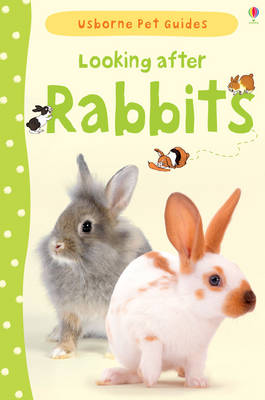Looking After Rabbits by Fiona Patchett