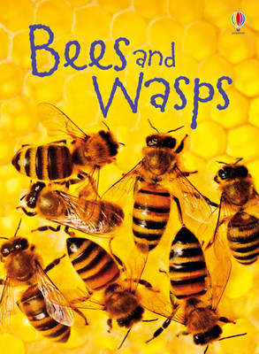 Bees & Wasps by James MacLaine