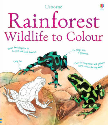 Rainforest Wildlife to Colour by Susan Meredith, Megan Cullis