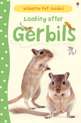 Looking After Gerbils by Laura Howell