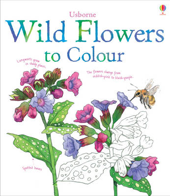 Wild Flowers to Colour by Susan Meredith