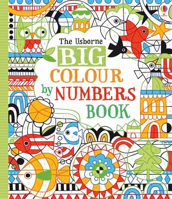 Big Colour by Numbers Book by Fiona Watt