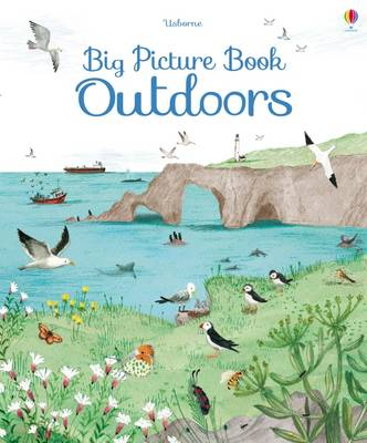 Big Picture Book Outdoors by Minna Lacey