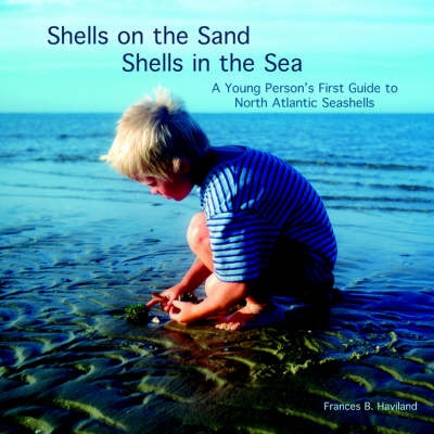 Shells on the Sand, Shells in the Sea by Frances Haviland