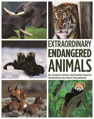 Extraordinary Endangered Animals by Sandrine Silhol, Gaelle Guerive