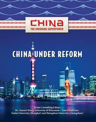 China Under Reform by Zhimin Lin