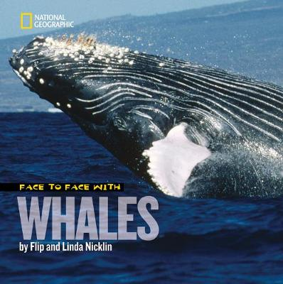 Face to Face with Whales by Flip Nicklin