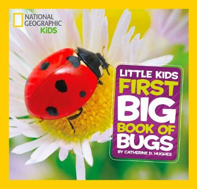 First Big Book of Bugs by Catherine D. Hughes