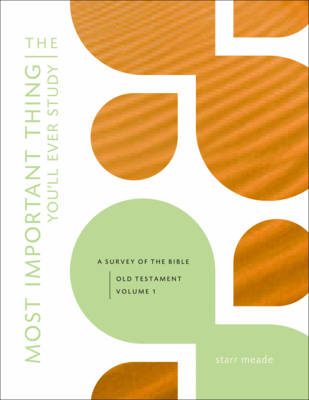 The Most Important Thing You'll Ever Study A Survey of the Bible by Starr Meade