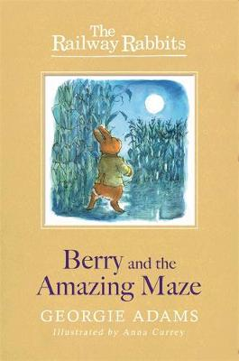 Berry and the Amazing Maze by Georgie Adams