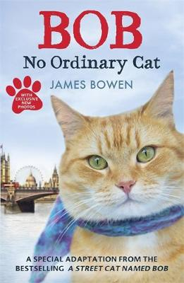 Bob No Ordinary Cat by James Bowen