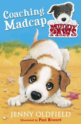 Coaching Madcap by Jenny Oldfield