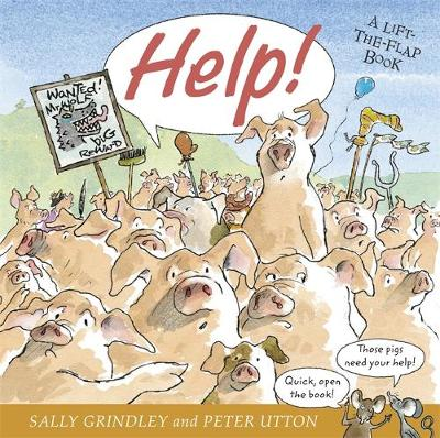 Help Lift-The-Flap Book by Sally Grindley