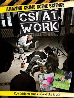 CSI at Work by John Townsend