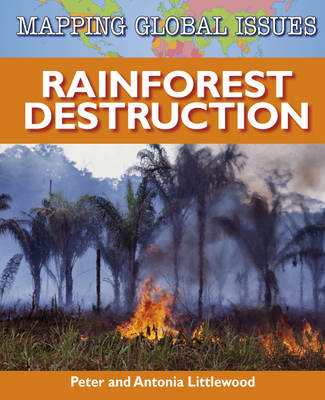 Rainforest Destruction by Peter Littlewood