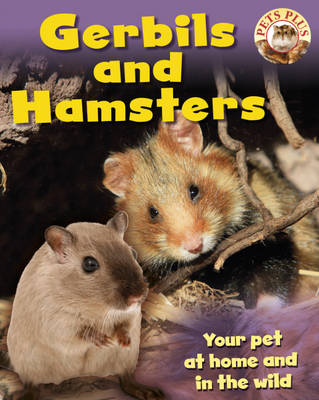 Gerbils and Hamsters by Sally Morgan