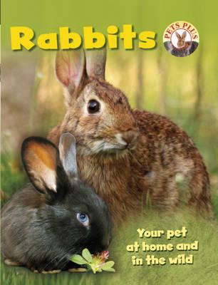 Rabbits by Sally Morgan