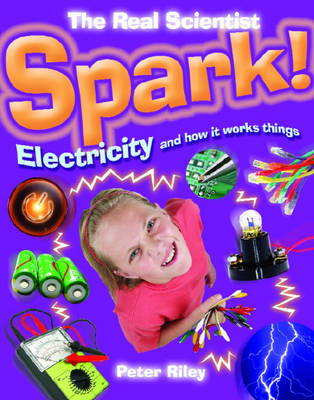 The Spark-Electricity and How it Works by Peter Riley