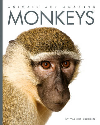 Monkeys by Valerie Bodden