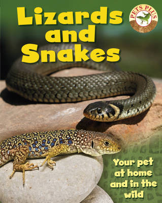 Lizards and Snakes by Sally Morgan