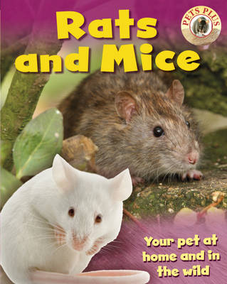 Rats and Mice by Sally Morgan