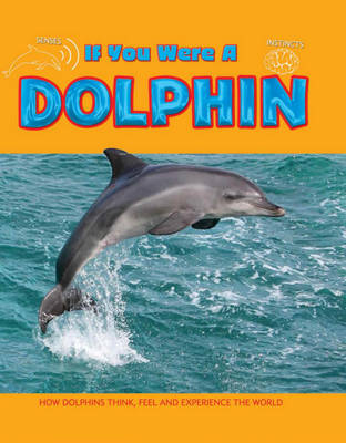 Dolphin by Clare Hibbert