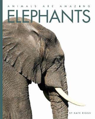 Elephants by Kate Riggs, Valerie Bodden