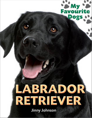Labrador Retriever by Jinny Johnson
