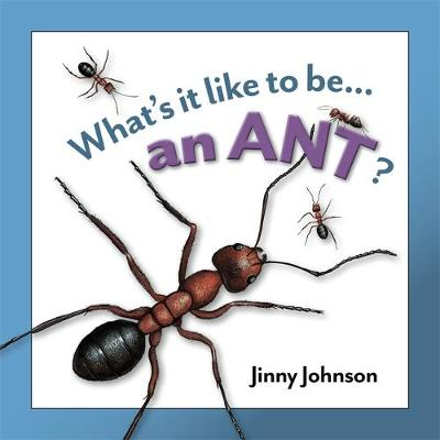 An Ant by Jinny Johnson