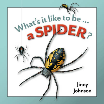 A Spider by Jinny Johnson
