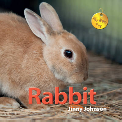 Rabbit by Jinny Johnson