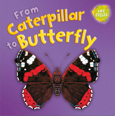 From Caterpillar to Butterfly by Gerald Legg