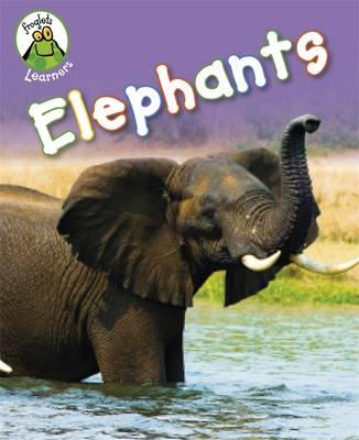 Elephants by Annabelle Lynch