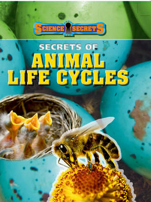 Secrets of Animal Life Cycles by Andrew Solway