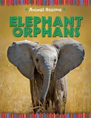 Elephant Orphans by Clare Hibbert